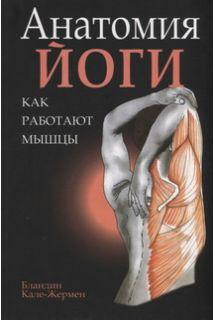 Анатомия йоги: как работают мышц..